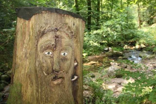 Baumstamm mit Gesicht