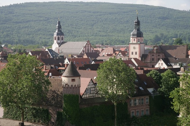 Blick auf Ettlingen